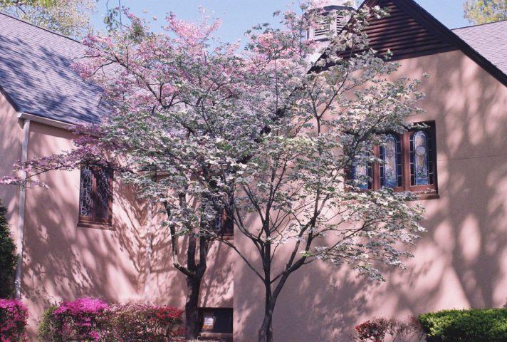 cropped-pink-church13.jpg